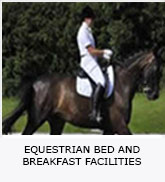 Equestrian Bed And Breakfast Facilities
